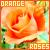 Fan of orange roses