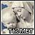 Fan of the Met